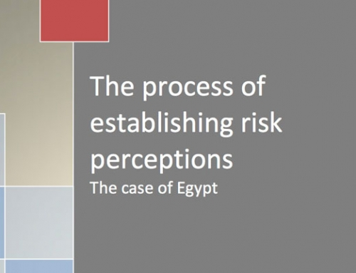 The process of establishing risk perceptions